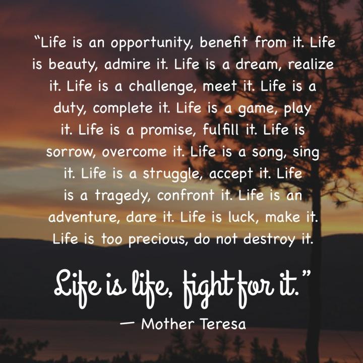 life beautiful journey essay