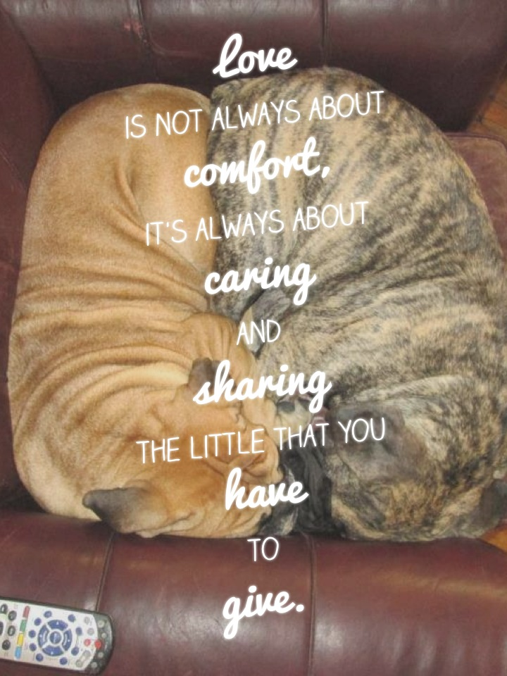 Love is not always about comfort, it's always about caring and sharing the little that you have to give.