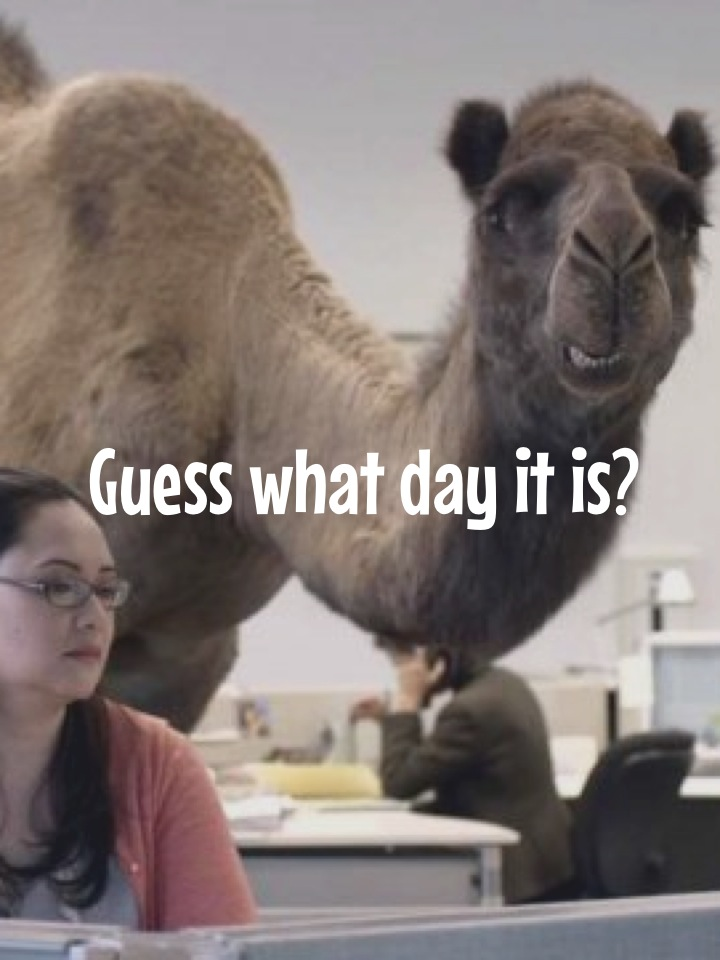 Guess what day it is?
