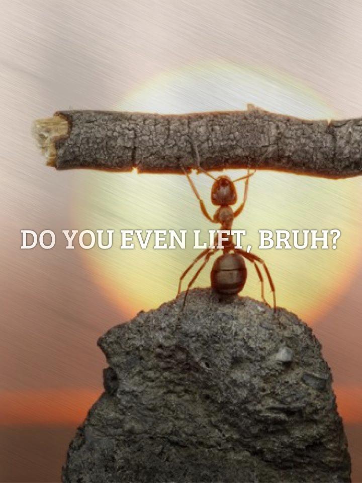 Do you even lift, bruh?