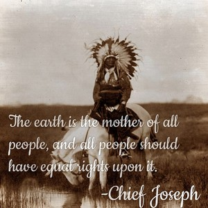 The earth is the mother of all people, and all people should have equal rights upon it. -Chief Joseph