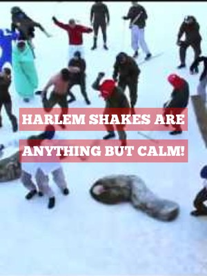 Harlem Shakes are anything but calm!