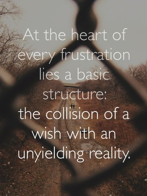 At the heart of every frustration lies a basic structure: the collision of a wish with an unyielding reality.