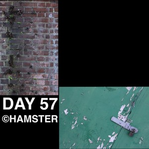 Day 57 ©Hamster