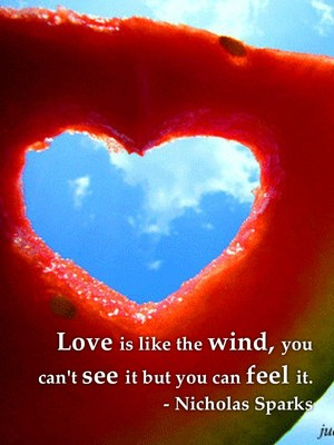 Love is like the wind, you can't see it but you can feel it. - Nicholas Sparks