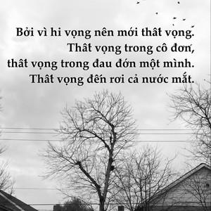 Bởi vì hi vọng nên mới thất vọng. Thất vọng trong cô đơn, thất vọng trong đau đớn một mình. Thất vọng đến rơi cả nước mắt.