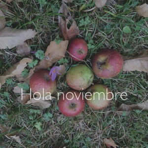 Hola noviembre
