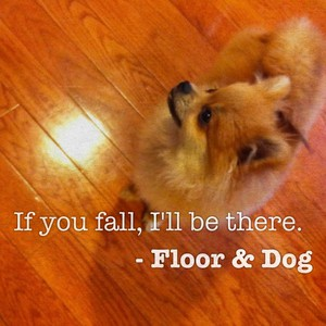 If you fall, I'll be there. - Floor & Dog