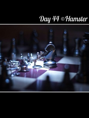 Day 44 ©Hamster