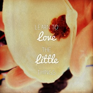 Learn to Love the Little Things