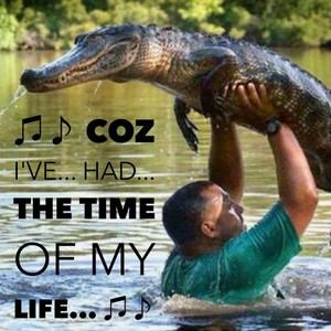 ♫♪ Coz I've... had... the time of my life... ♫♪