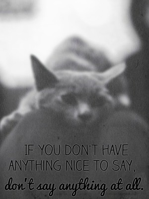 If you don't have anything nice to say, don't say anything at all.