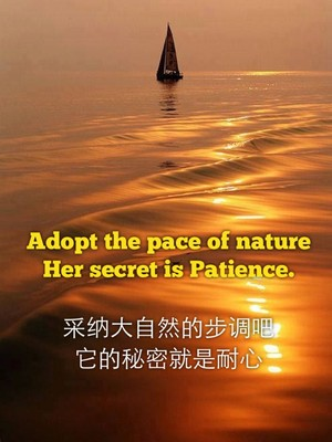 Adopt the pace of nature Her secret is Patience. 采纳大自然的步调吧 它的秘密就是耐心