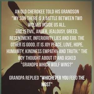 "An old Cherokee told his grandson ""My son there is a battle between two wolves inside us all. One is evil, anger, jealousy, greed, resentment, inferiority lies and ego. The other is good. It is joy peace, love, hope, humanity, kindness empathy and truth."" The boy thought about it and asked ""Grandpa which Wolf wins?"" Grandpa replied ""whichever you feed the most"""