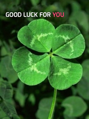 Good luck for YOU