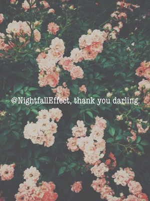 @NightfallEffect, thank you darling.