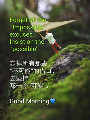 "Forget all the 'Impossible' excuses. Insist on the 'possible'. 忘掉所有那些 ""不可能""的借口, 去坚持 那一个""可能""。 Good Morning💙"