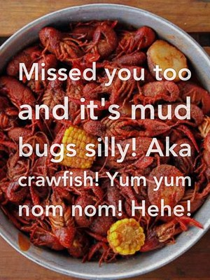 Missed you too and it's mud bugs silly! Aka crawfish! Yum yum nom nom! Hehe!