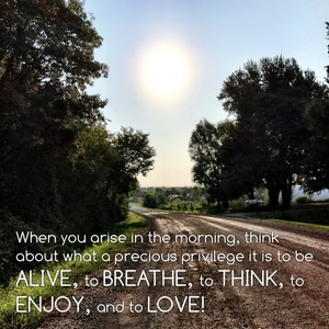 When you arise in the morning, think about what a precious privilege it is to be alive, to breathe, to think, to enjoy, and to love!
