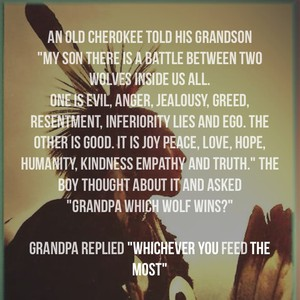 """An old Cherokee told his grandson """"My son there is a battle between two wolves inside us all. One is evil, anger, jealousy, greed, resentment, inferiority lies and ego. The other is good. It is joy peace, love, hope, humanity, kindness empathy and truth."""" The boy thought about it and asked """"Grandpa which Wolf wins?"""" Grandpa replied """"whichever you feed the most"""""""