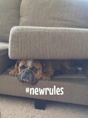 #newrules