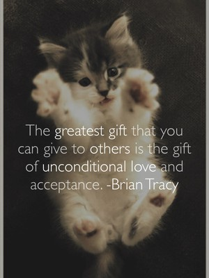 The greatest gift that you can give to others is the gift of unconditional love and acceptance. -Brian Tracy