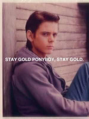 Stay gold Ponyboy, stay gold.