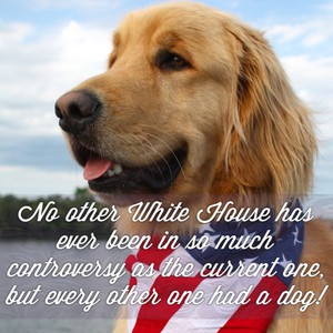 No other White House has ever been in so much controversy as the current one, but every other one had a dog!