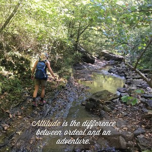 Attitude is the difference between ordeal and an adventure.