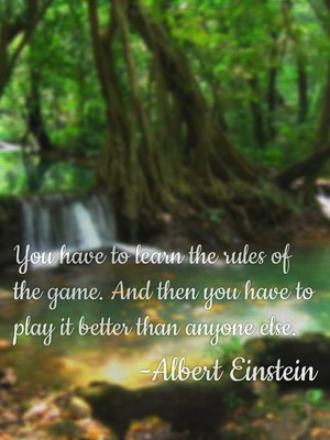 You have to learn the rules of the game. And then you have to play it better than anyone else. -Albert Einstein