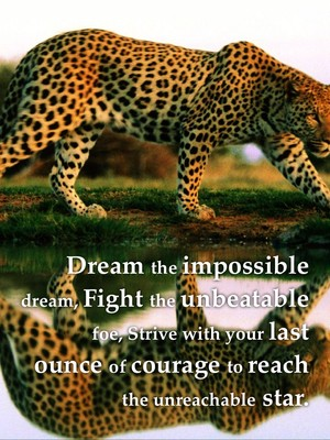 Dream the impossible dream, Fight the unbeatable foe, Strive with your last ounce of courage to reach the unreachable star.