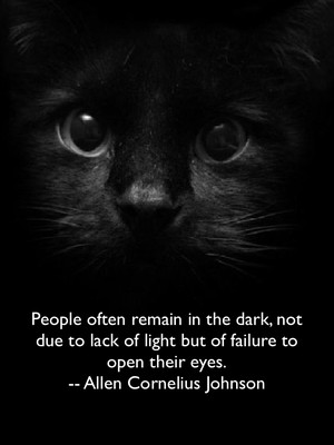 People often remain in the dark, not due to lack of light but of failure to open their eyes. -- Allen Cornelius Johnson