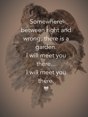 Somewhere between right and wrong, there is a garden. I will meet you there... I will meet you there. ♥️