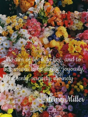 The aim of life is to live, and to live means to be aware, joyously, drunkenly, serenely, divinely aware. -Henry Miller