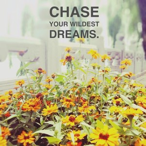 Chase your wildest dreams.