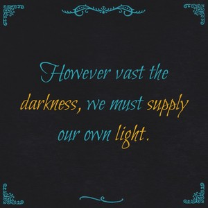 However vast the darkness, we must supply our own light.