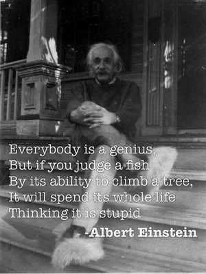 Everybody is a genius, But if you judge a fish By its ability to climb a tree, It will spend its whole life Thinking it is stupid -Albert Einstein