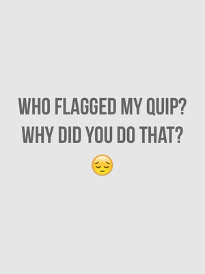 Who flagged my quip? Why did you do that? 😔