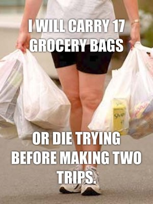 I will carry 17 grocery bags Or die trying before making two trips.