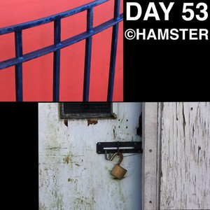 Day 53 ©Hamster