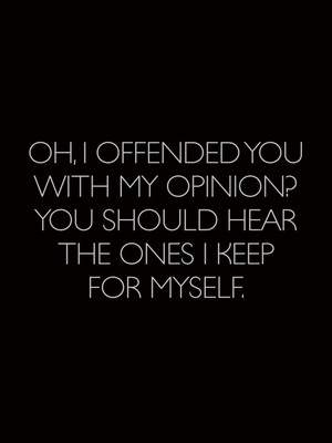 Oh, I offended you with my opinion? You should hear the ones I keep for myself.