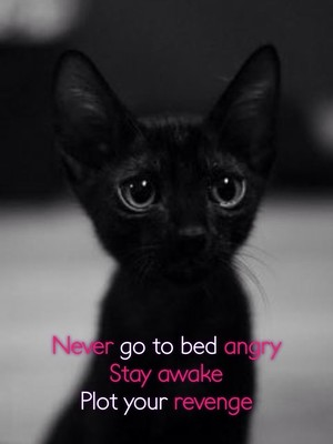 Never go to bed angry Stay awake Plot your revenge