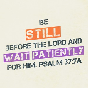 Be still before the Lord and wait patiently for him. Psalm 37:7a