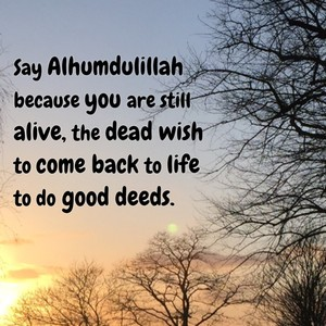 Say Alhumdulillah because you are still alive, the dead wish to come back to life to do good deeds.