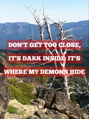 Don't get too close, it's dark inside: it's where my demons hide