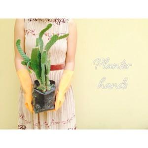Planter hands