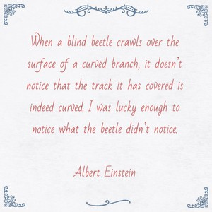 When a blind beetle crawls over the surface of a curved branch, it doesn't notice that the track it has covered is indeed curved. I was lucky enough to notice what the beetle didn't notice. Albert Einstein
