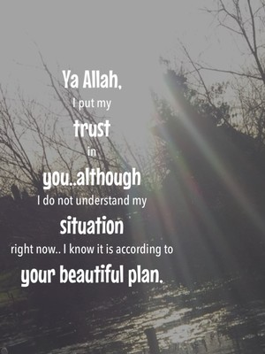 Ya Allah, I put my trust in you..although I do not understand my situation right now.. I know it is according to your beautiful plan.