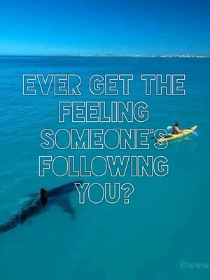 Ever get the feeling someone's following you?