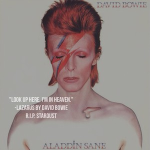 """""""Look up here, I'm in Heaven."""" -Lazarus by David Bowie R.I.P. Stardust"""